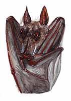 Hypsignathus Monstrous